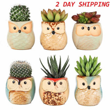 6 Owl of Planter Pots Succulents Ceramic Cactus Flower Pots Garden Home Decor Us
