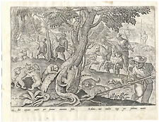 Antique Hunting Print-WILD CAT-FERAL-HUNT-CLIMB-PIKE-No. 59-Stradanus-1615