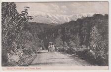 TASMANIA · c.1910: unused PPC w/view MOUNT WELLINGTON AND HUON ROAD