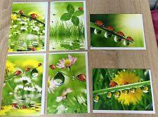 100x Glückskarten Glückwunschkarten Grußkarten Kleeblatt Geburtstag 49-0007 EF