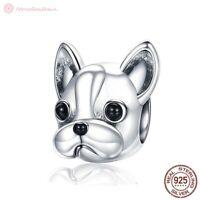 Charm Anhänger w.f. Pandora Hund Französische Bulldogge Bully 925 Sterlingsilber