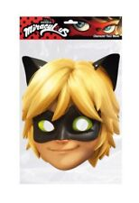 Cat Noir from Miraculous Single 2D Card Party Face Mask French superhero fun