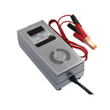 12V8A smart battery charger desulfator negative pulse deep cycle vehicle