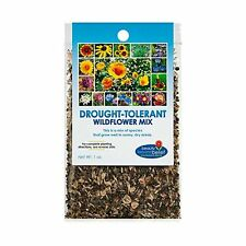 Drought Resistant Tolerant Wildflower Seeds Open-Pollinated Bulk Flower Seed .