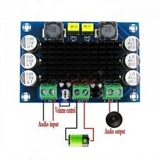 TPA3116 D2 DA DC 12V 24V 100W Mono Channel Digital Power Audio Amplifier Board