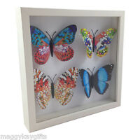 3D Butterfly Frame – Framed White Black Picture Glitter Butterflies Wall Hanging