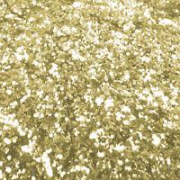 "Chunky Gold Glitter 40g Chunky .040"""