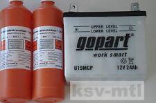 Batterie Säure für Rasentraktor 12V 24Ah Toro +Pol link