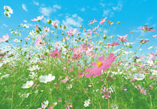 Wall Mural photo Wallpaper FLOWER MEADOW 366 x 254cm GIANT DECO for bedroom