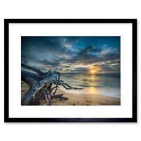 Driftwood Beach Sunset Ocean Framed Wall Art Print 12x16 Inch