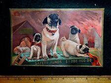 Victorian Trade Card Insurance Pugs Dogs Housefire Harry Beard #K