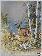 Matted Buck, Doe & Fawn (DEER) Foil Art Print~Affordable Art~8x10 Animal