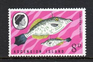 Ascension Island - 1968, Fish (1st Series), 8d Leather Jacket (sg114) MNH