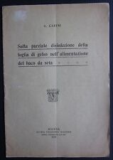 1915 PARZIALE DISINFEZIONE GELSO BACO DA SETA A. Carini bachicoltura sericoltura