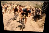 CYCLISME FIGNON - HINAULT TOUR DE FRANCE 1984 PHOTO 17 X 12 COLLECTION L'EQUIPE