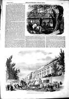 Old Antique Print 1851 Great Exhibition Building Cutting Trees Transept 19th