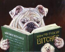 Casanova Lucia Herffernan Dog Art Print 10x8 Image Conscious
