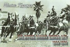 Postcard Elaine Kramer Cowgirl 6-Horse Roman Riding Act 1954-74 MINT