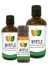 Myrtle Essential Oil Pure Natural Authentic Aromatherapy Myrtus communis