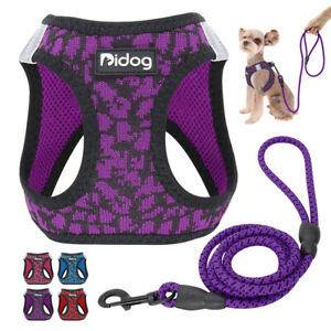 Pettorina e guinzaglio per cani Riflettente Imbottito Imbracatura Chihuahua XS-M