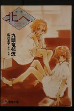 JAPAN novel: Kita e itsuka deau anatani