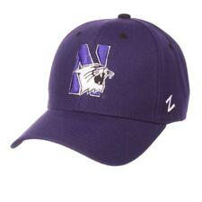 Northwestern Wildcats Sports Fan Cap b14c309d1cc7