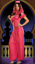 BELLY DANCER BOLLYWOOD JASMINE GENIE ARABIAN PRINCESS LADIES COSTUME SIZE 10-12