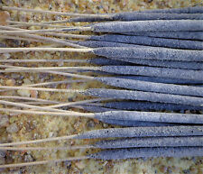 5 Sticks Copal Resin Incense White Mayan Copal Handrolled Chiapas Mexico