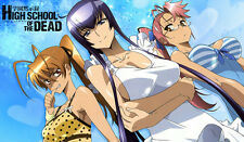 295 Highschool of the Dead PLAYMAT CUSTOM PLAY MAT ANIME PLAYMAT FREE SHIPPING