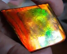 ammonite ammolite STONE color changer Large BEAUTY 49x38.4mm