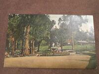 Early New Zealand postcard - Fountain & park scene - Wellington