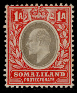 SOMALILAND PROTECTORATE EDVII SG33, 1a grey-black & red, M MINT. Cat £20.