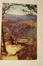 North Carolina - Chestoa View - Vintage - Postcard.