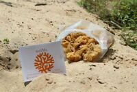 Sea Moss 1 lb (100% Wildcrafted Saint Lucia) BULK ($15 a lb-BUY 5 or MORE lb)
