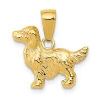 14k Springer Spaniel Dog Pendant New charm Yellow Gold