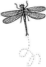 Unmounted Rubber Stamps, Dragonflies, Insects, Nature Stamps, Flying Dragonfly