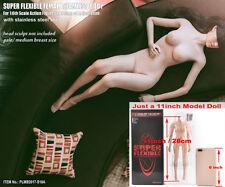 TBLeague 1/6  Flexible Seamless Female Body Mid Bust Pale Figure PLMB2017-S18A