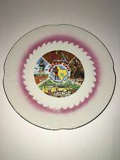 SAN MARCOS TEXAS WONDER CAVE DEER PARK collector plate vintage