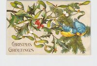 PPC POSTCARD CHRISTMAS GREETINGS BLUE BIRDS HOLLY MISTLETOE GOLD EMBOSSED