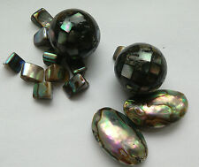 14 Natural Paua/Abalone Shell Beads, Jewellery Making/Beading/Embellish/Crafts
