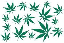 Lot of 16  marijuana, ganja, pot, weed, herb decals or stickers vinyl cut.