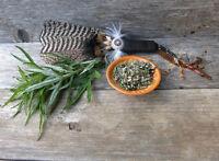 ** der Prärie-Salbeistrauch ist bei den Indianern eine heilige Pflanze - Kräuter
