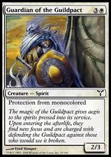 MTG Magic - (C) Dissension - Guardian of the Guildpact - SP