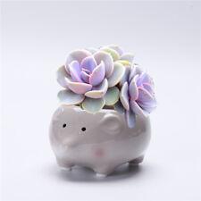 Cute Animal Ceramic Succulent Plant Flower Pot Planters Garden Office Desk Decor