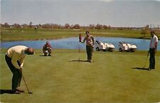 St Charles Illinois~Pheasant Run Golf Course~Golfers on Green~Golf Carts~1970s