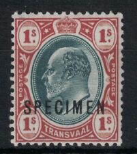 SOUITH AFRICA, TRANSVAAL, SG256s, 1/- SPECIMEN, MOUNTED MINT.