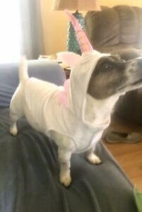 Unicorn Dog Costume, White & Pink Sm-Med Dogs Easy Closure NWT Halloween