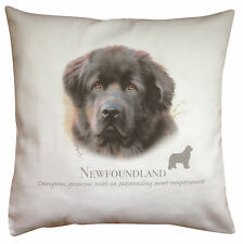 More details for newfoundland dog | 100% cotton cushion cover with zip | howard robinson | gift