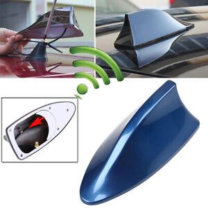 Blue Shark Fin Style Car Roof Antenna Aerial FM/AM Radio Signal Auto Decor Kit