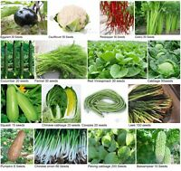 Heirloom Garden vegetable seed Non-GMO seeds bank survival organic plant